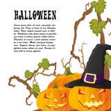 Halloween-de de herfstachtergrond met drie pompoenen isoalted op whit Stock Afbeeldingen