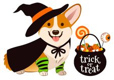 Halloween-de hond van het corgipuppy kleedde zich als heks, die hoed en kaap dragen vector illustratie