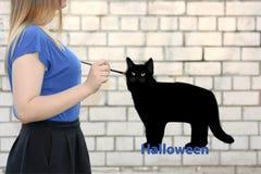 Halloween de meisjesleeswijzers trekt een zwarte kat Stock Foto's