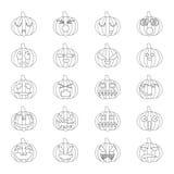 Halloween-de pompoenen plaatsen 20 pictogrammen Stock Foto