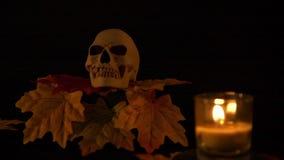 Halloween-de de steunkaars en esdoorn animatedHalloween steun skul en kaars bij de zwarte animatie als achtergrond stock videobeelden