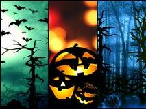 Halloween-de symbolenpompoen slaat bosachtergrond Royalty-vrije Stock Fotografie