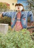 Halloween-de vogelverschrikkers van het strokarakter Royalty-vrije Stock Afbeeldingen