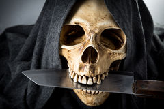 Halloween death Skeleton head Royalty Free Stock Photography