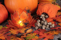 Halloween decor. Royalty Free Stock Image
