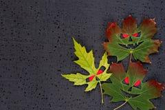 Halloween-decor - de bladeren van de de herfstesdoorn met kwade gezichten en rode ogen Zwarte achtergrond Stock Fotografie