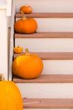 Halloween decor Stock Photo
