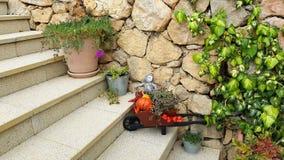 Halloween-decoratie met bloemen en groene klimplantinstallatie op de stappen van de steentegel stock afbeeldingen