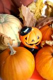 Halloween decoration. Cute Jack-o'-lantern with bright colorful autumn pumpkins, decoration to Halloween, vertical Stock Photo