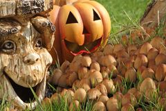 Halloween decoration. Royalty Free Stock Images