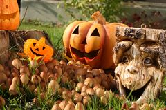 Halloween decoration. Royalty Free Stock Image