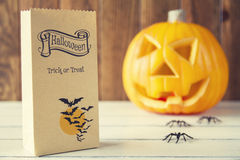 Free Halloween Decoration Royalty Free Stock Photo - 49392765