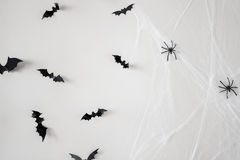 Halloween decoration of bats and spiders on web Royalty Free Stock Photos