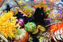 Decoration Halloween Stock Photo