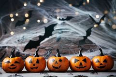 Halloween decoration with funny pumpkin heads, spider, web and flying bat on mystical background. Halloween decoration with funny pumpkin heads, spider, web and stock photo