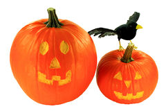 Halloween decoration over white background Stock Photography
