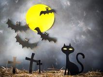 Halloween decoration. Stock Photos