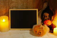 Halloween decoration pumpkin , candles and skull with copy space on wall background Stock Photos