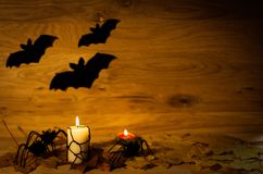 Halloween decoration with spider on web, and candles. Halloween decoration with spider on web,  and candles on wooden background Stock Images
