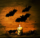 Halloween decoration with spider on web,  and candles Royalty Free Stock Photo