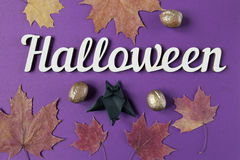 Halloween decoration text and maple leaves. Top view. Background. Halloween decoration text and maple leaves. Papercut bat flying. Top view Royalty Free Stock Photography