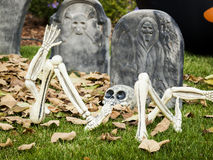 Halloween decorations Stock Photography