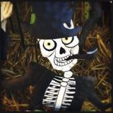 Halloween Decorations Closeup Stock Photo