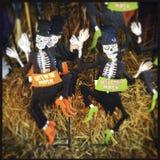 Halloween Decorations Stock Photos