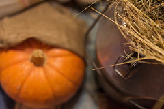 Halloween decorations with pumpkin Stock Images