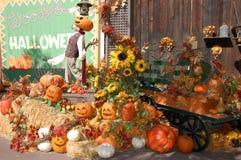 Halloween dekoracji Zdjęcia Royalty Free