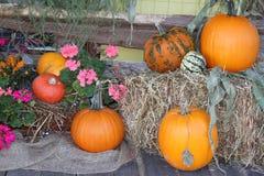 Halloween-Dekorationen mit Kürbisen Lizenzfreie Stockfotografie