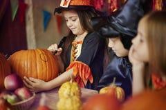 Halloween deltagare royaltyfri foto