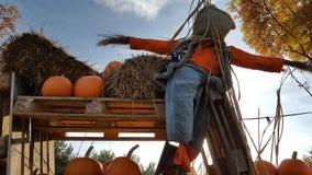 Halloween in den Niederlanden Stockfotografie
