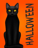 Halloween design with black cat. On the orange background Royalty Free Stock Photo