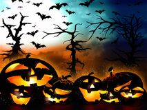 Halloween design, pumpkins on the forest background Stock Photos