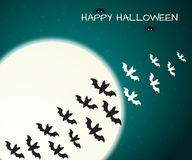 Halloween design template with bats and moon Stock Photography