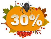 Halloween discount coupon of 30 percent. Halloween pumpkin sale Stock Image