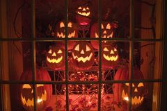 Halloween display of glowing jack-o-lanterns in a store window at night, Connecticut. Stock Photo