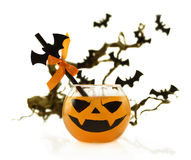 Halloween Drink With Bats On Tree Branch Stock Images