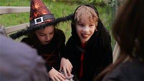 Halloween, dzieciaki Chce Halloweenowego cukierek, dzieci jest ubranym czarownica kostiumy z kapeluszami, dzieciaka trikowym lub  zbiory