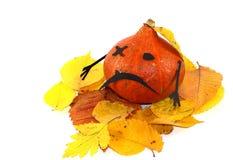 Halloween сelebration Stock Images