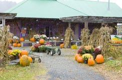 Halloween em Middlesex Fotos de Stock