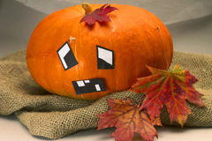 Halloween. Emotional pumpkin with maple leaves Stock Photos