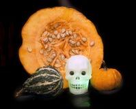 Halloween está aqui Imagem de Stock