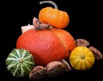 Halloween está aqui Fotografia de Stock