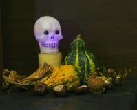 Halloween está aqui Foto de Stock