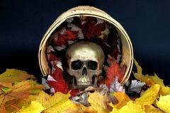 Halloween-Etüde. Lizenzfreies Stockbild