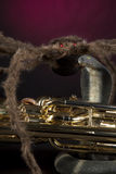 Halloween Euphonium Tuba Snake Spider Royalty Free Stock Photo