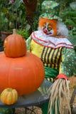 halloween för pojken för 3 bakgrund isolerade den gulliga hatten gammala vita häxaår för scarecrow mycket Royaltyfri Fotografi
