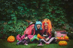 Halloween fairies Royalty Free Stock Images